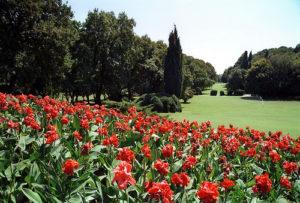 Parco Segurtà