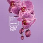 """colore dell'anno 2014 """"radiant orchid"""""""