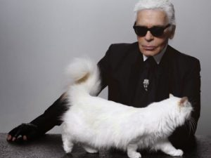 Karl Lagerfled e choupette